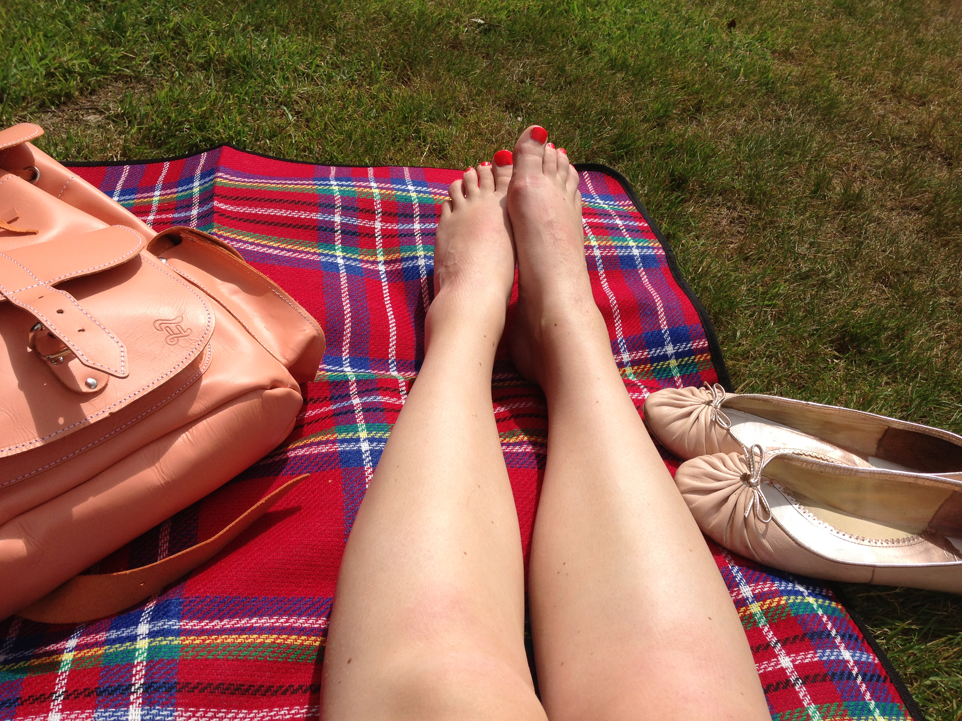Sunny day picnic