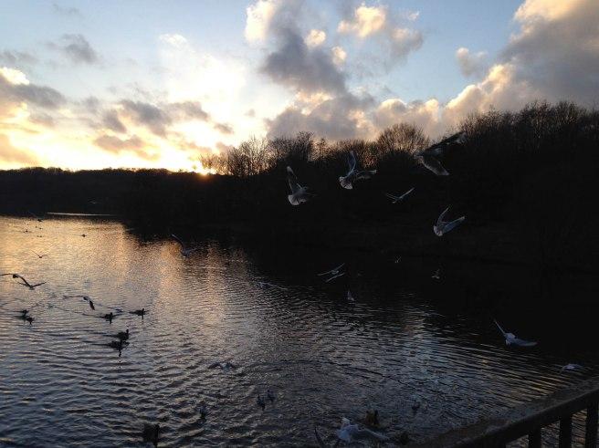 Jumbles reservoir