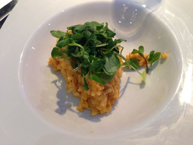 alberts starter risotto
