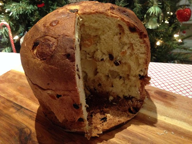 Traditional panettone