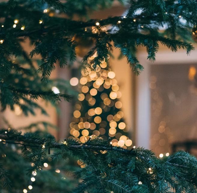festive-vibes