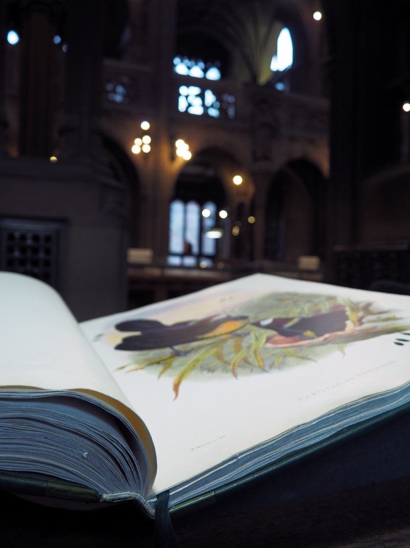 John Rylands Reading Room