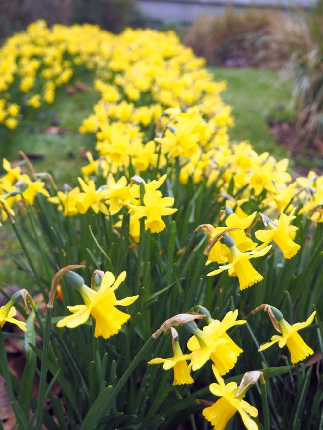 St John's Gardens Manchester 3
