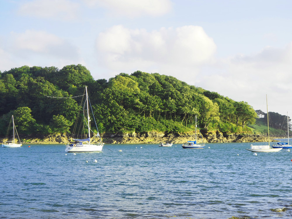 Cornwall Coastal View